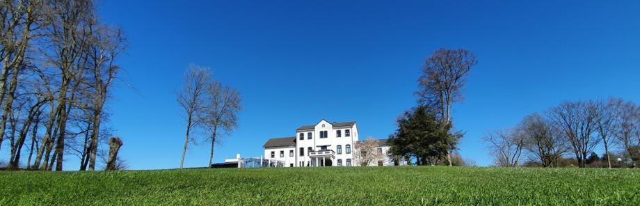 einfach besser golfen